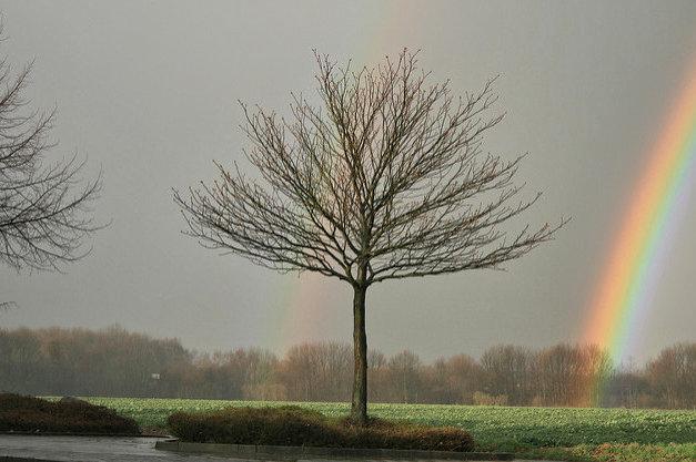 fotografiert mit einer Canon EOS 400D Digital